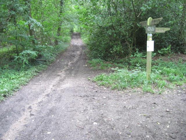 Footpath near Marwell Zoo