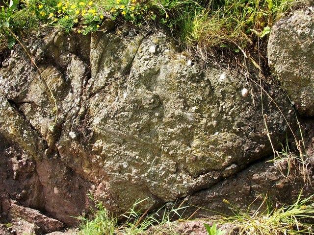 Slickensides at Ardmore fault plane