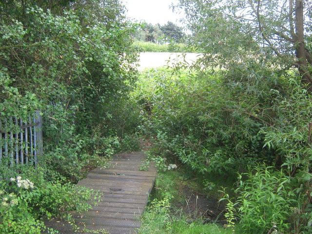 Footbridge in Woodlands Farm