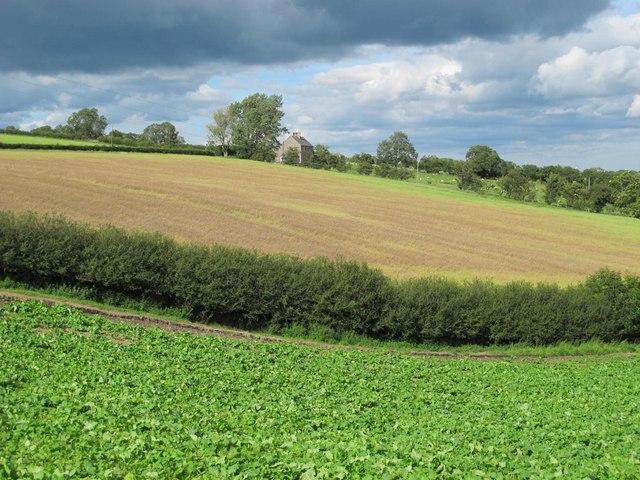 Farmland between Houtley and Birks
