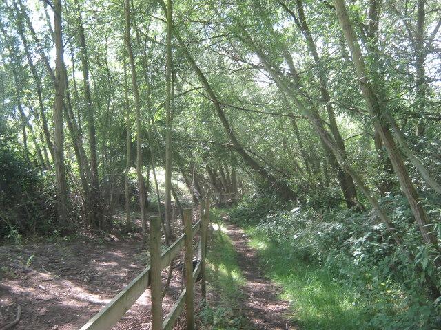 Permissive path in Woodlands Farm