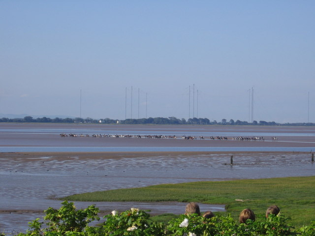 Solway looking towards Anthorn with horse riders