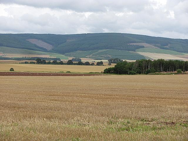 Stubble near Laurencekirk