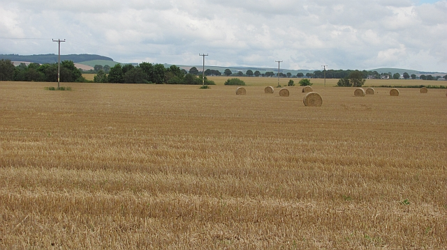 Round bales, Blackiemuir