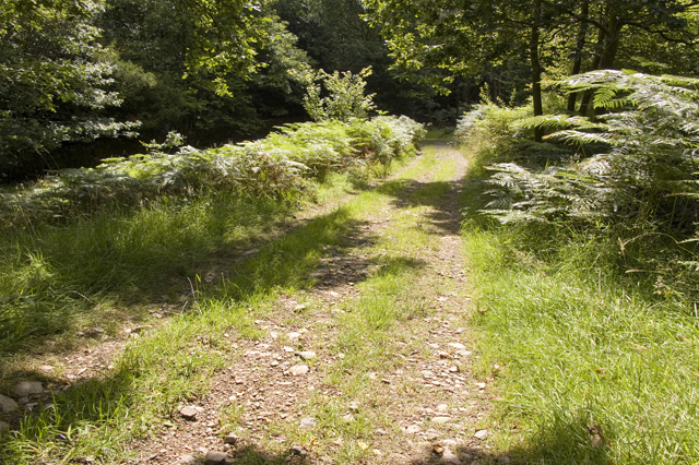 Permissive track through Dockney Parrock