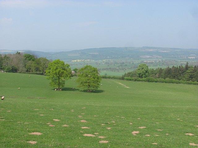 Pasture, Sutton Hill