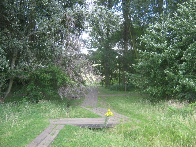 Boardwalk in East Wickham Open Space