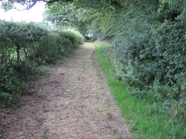 Footpath from Stroudwood Road to Mortimers Lane