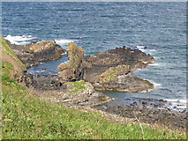C9444 : The Camel's Back outcrops in Portnaboe by Eric Jones