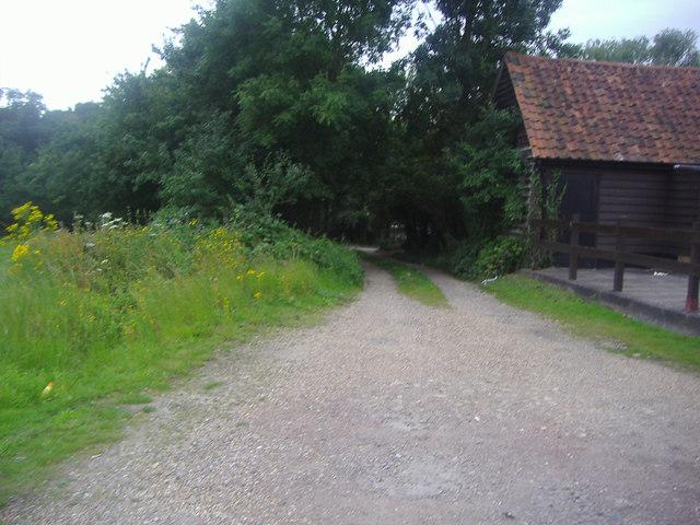 Track off Woodridden Hill