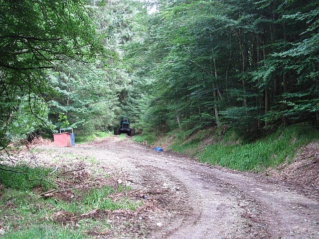 Track, Garrold Wood