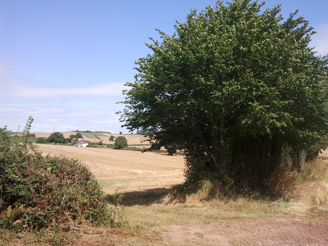 Field entrance and Helwell Farm in the distance