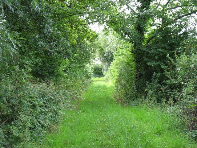 Footpath between Crickham and Stoughton