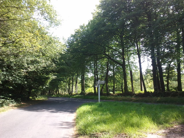 Road to Starcross and Mamhead