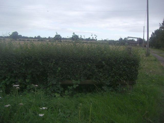 Looking towards Water's Farm, Stapleford Abbots