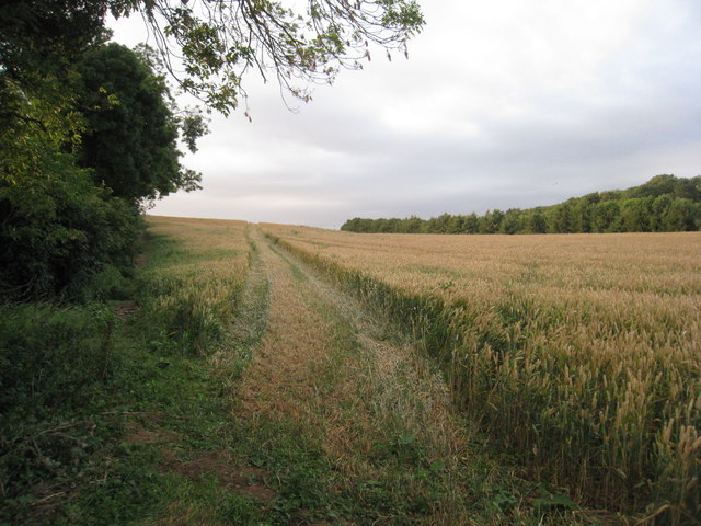 The footpath to Beelsby