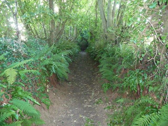 Sunken way near Blacktar Point