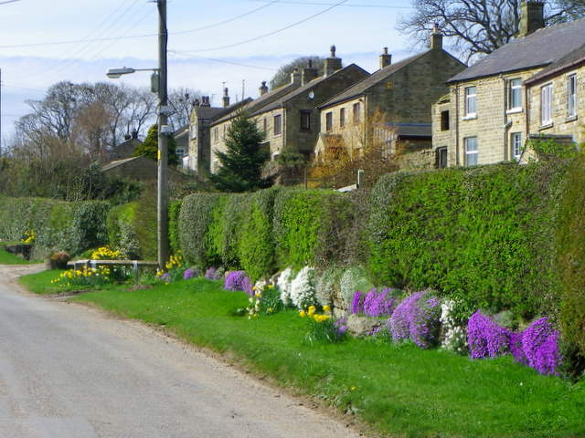 Colourful verge, Healey
