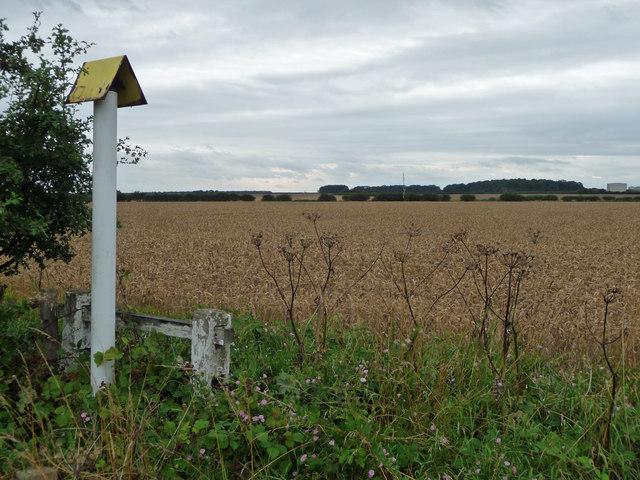 Pipeline Marker near Spot Height 59m