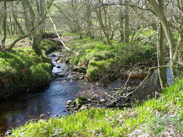 River Burn near Gollinglith Foot