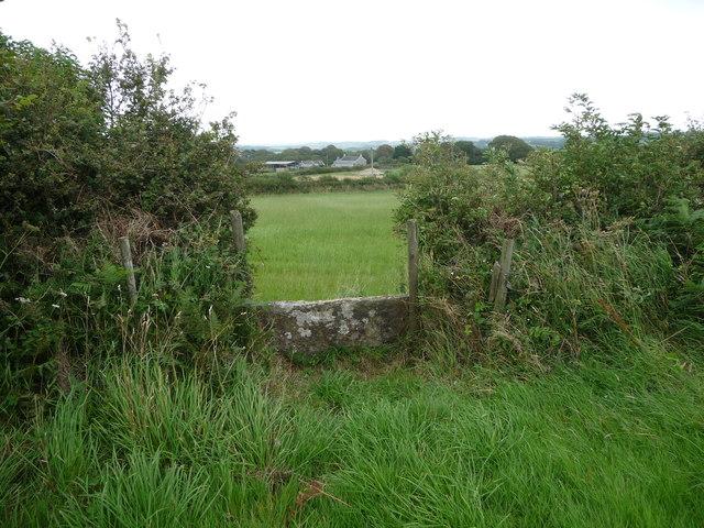 Stone stile in field boundary near Blackhall