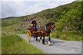 V8785 : Jaunting car, Gap of Dunloe by Ian Taylor