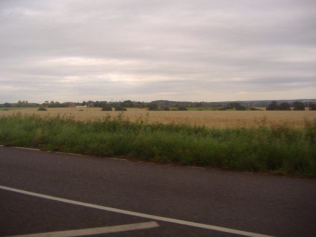 Fields by Abridge Road