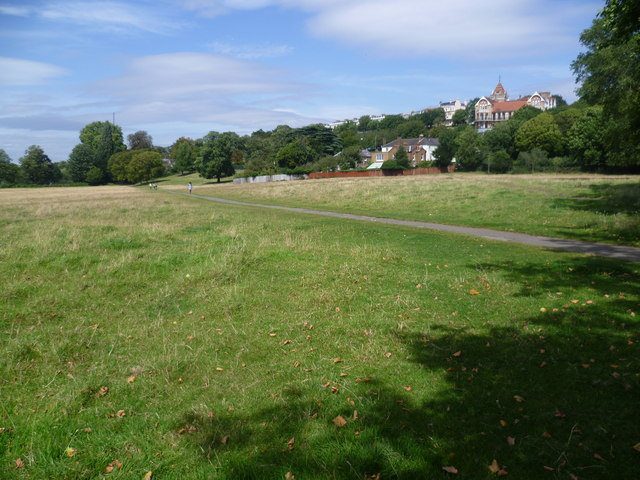 Petersham Meadows