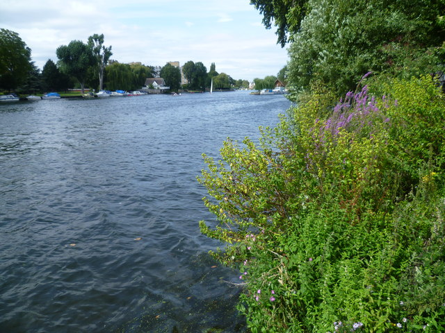 River Thames downriver of Kingston