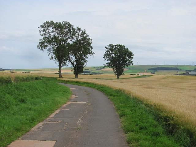 Farm road, Westerton