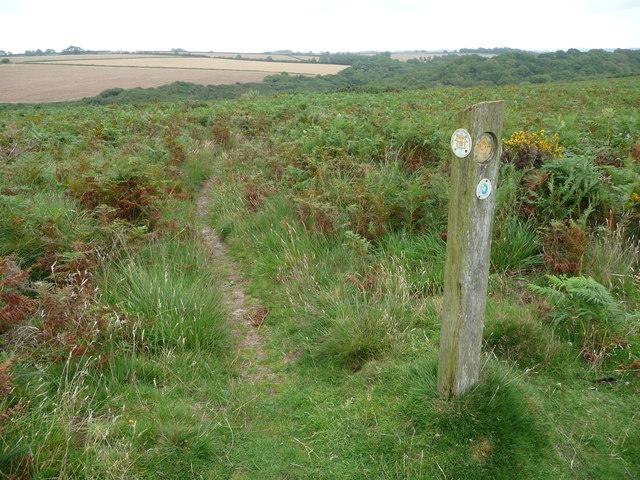 Waymarker post on Old Castle Down