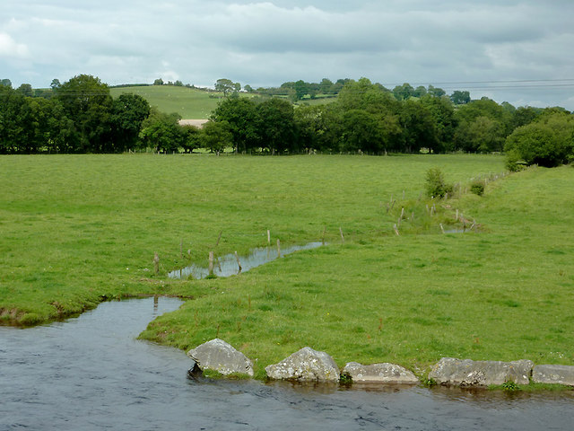 Pasture by the Afon Teifi at Pont Gogoyan, Ceredigion