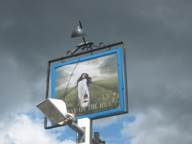 Fanny on the Hill, Pub Sign