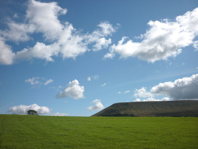 Meadow and Pendle Hill
