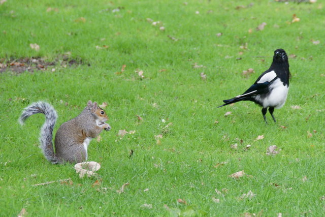 Two much-maligned characters in the Royal Botanic Gardens Edinburgh