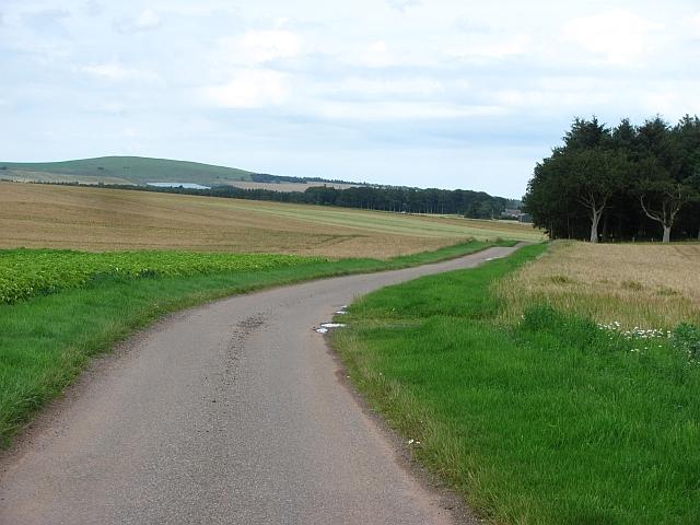 Road past Bomershanoe Wood