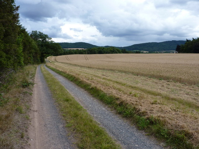 Track to Orleton Hall