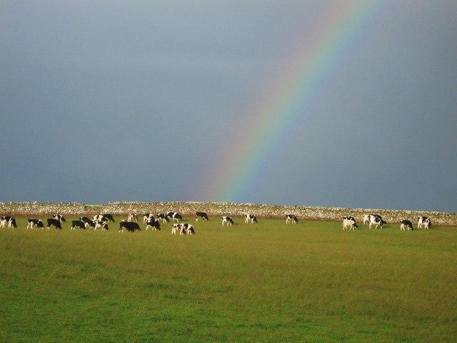 A rainbow at Dally