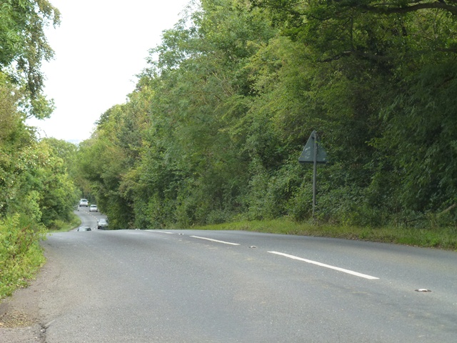 Bondip Hill, Near Illchester