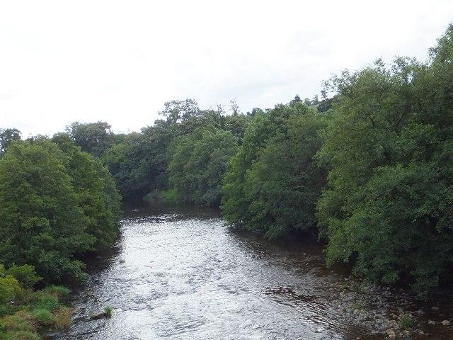 River Dart at Riverford Bridge