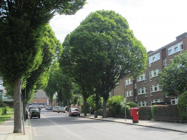 Brondesbury Road, NW6 (2)
