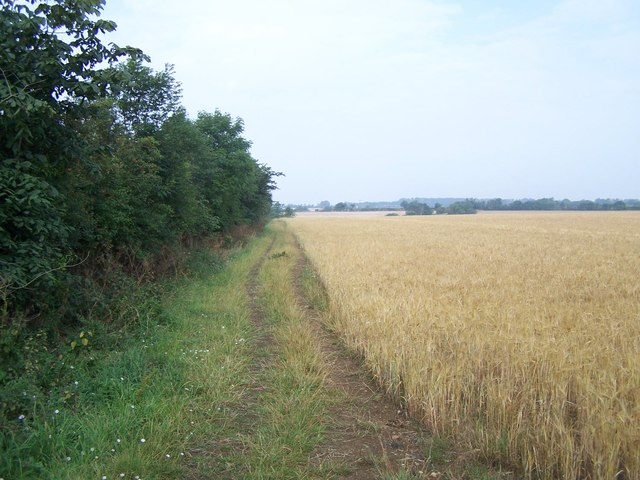 Footpath Near The Cranfords