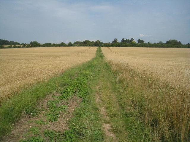 Footpath to Oakley