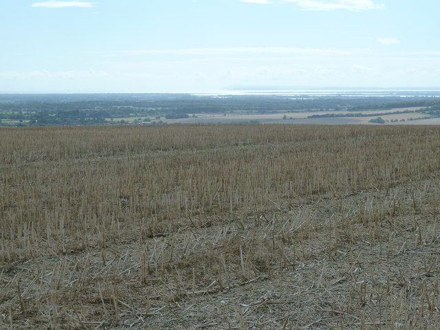 View SW over stubble field on Haye's Down