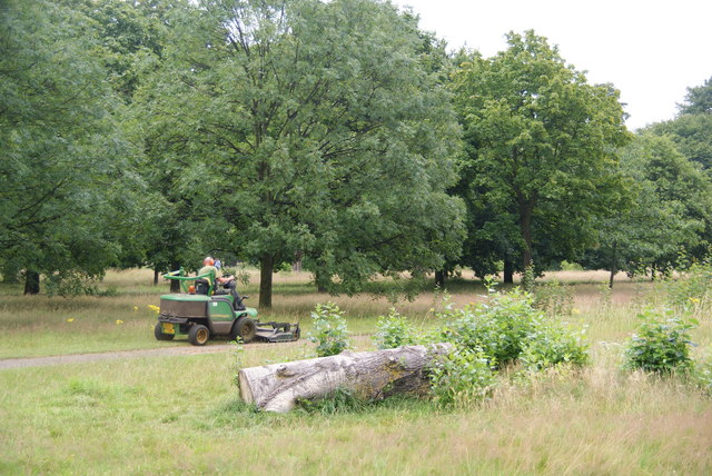 Mowing the verges in Hyde Park