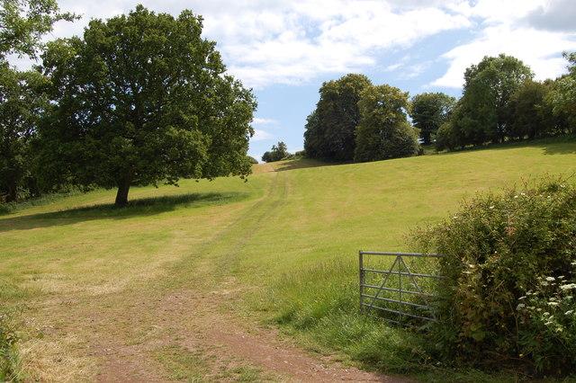 Pasture near Lone Farm