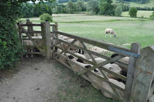 Blocked Gates