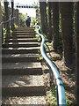 SX7237 : Steps, Overbeck's by Derek Harper