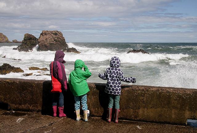 Wave watching at St Abbs