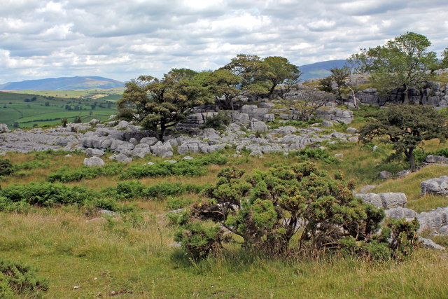 Newbiggin Crags